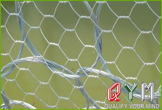 Six angle wire mesh