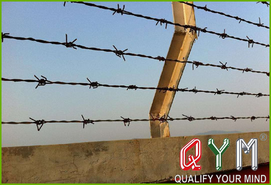 Barbed wire protective fence